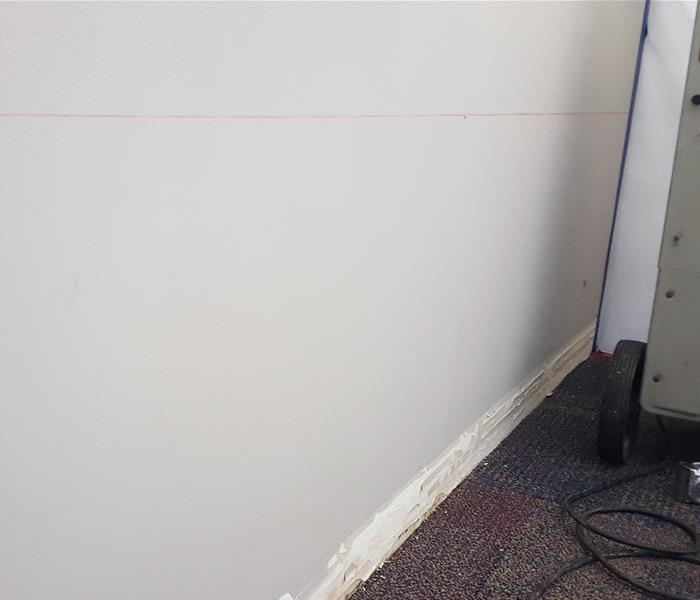 Weston Office Has Mold Problem Before