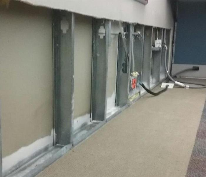 Weston Office Has Mold Problem After