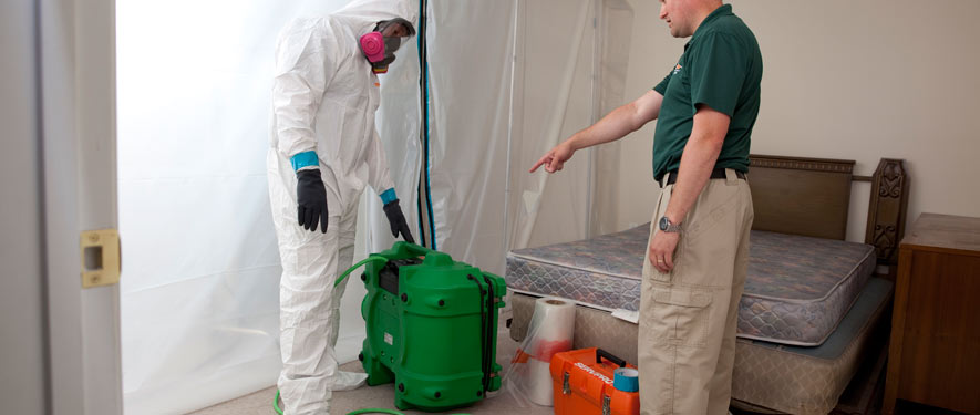 Davie, FL mold removal process